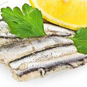 Fresh Marinated Anchovies